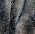 超柔染色印花刷6公分直条